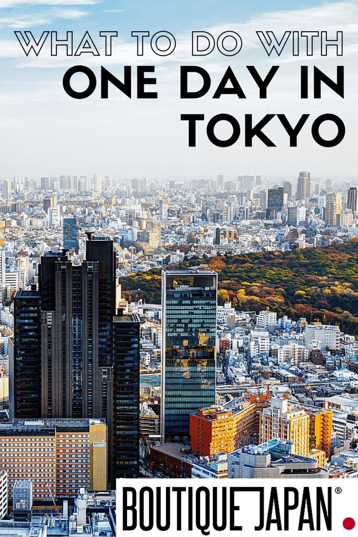 What should you do with one day in Tokyo, one of the world's largest cities?…