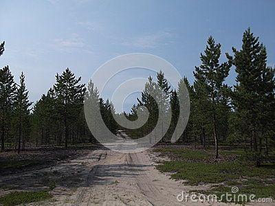 Photographed in Yakutia-Vilyuysk district