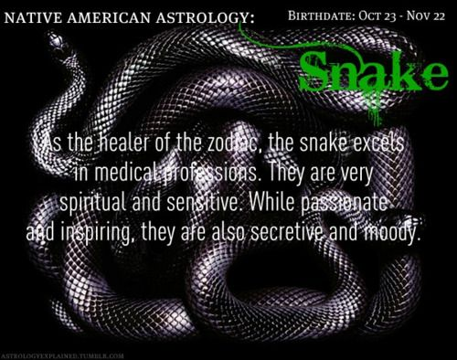 As the healer of the zodiac, the Snake excels in medical professions.  They are very spiritual and sensitive.  While passionate and inspiring, they are also secretive and moody.