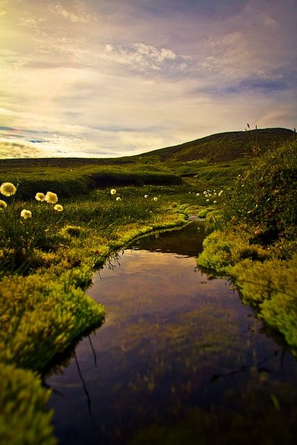 This Pin was discovered by Alena Bardey. Discover (and save!) your own Pins on Pinterest. | See more about iceland.