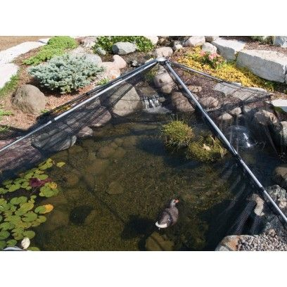 9 best images about pond deterrents on pinterest herons for Fish pond protection
