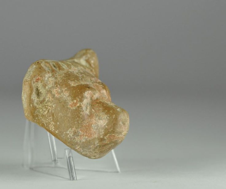 Roman bear head, 1st-2nd century A.D. Roman pottery bear head fragment, 3.5 cm high. Private collection