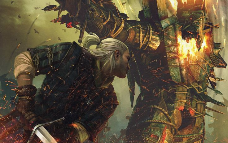 Video Game The Witcher 2: Assassins Of Kings  Wallpaper