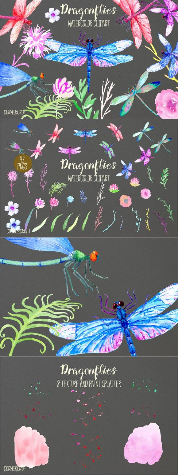 Watercolor Dragonfly damselfly