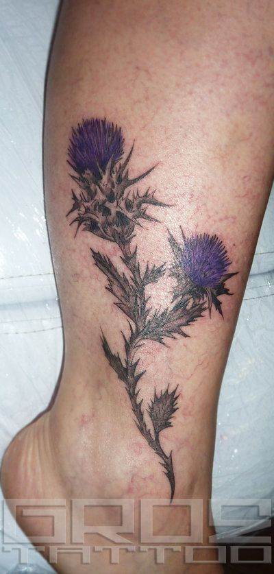 thistle by groeone on DeviantArt