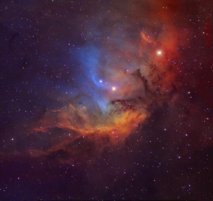 The Tulip in the Swan.The complex and beautiful nebula is shown here in a composite image that maps emission from ionized sulfur, hydrogen, and oxygen atoms into red, green, and blue colors. Ultraviolet radiation from young, energetic O star HDE 227018 ionizes the atoms and powers the emission from the Tulip Nebula. Image Credit & Copyright: Michael Joner, David Laney (West Mountain Observatory, BYU)