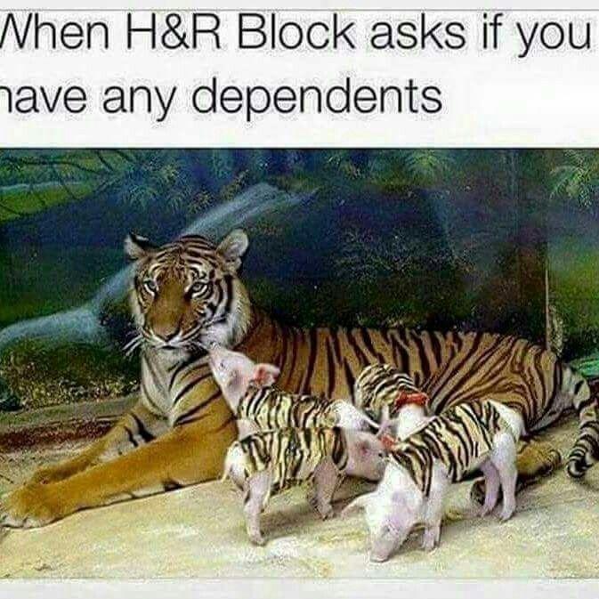 Income Tax Humor                                                                                                                                                      More