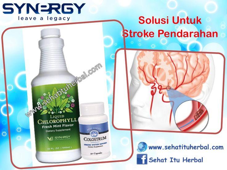Solusi Untuk Stroke Pendarahan - Sehat Itu Herbal