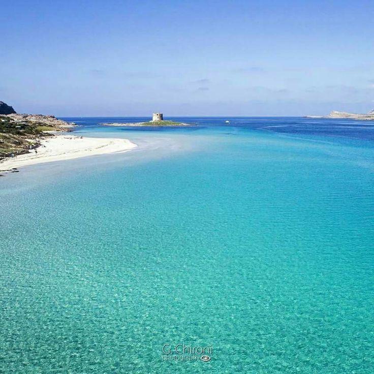 Stintino (Sassari) Un meraviglioso scatto -Febbraio- Sardinia-Cerdeña-Sardegna
