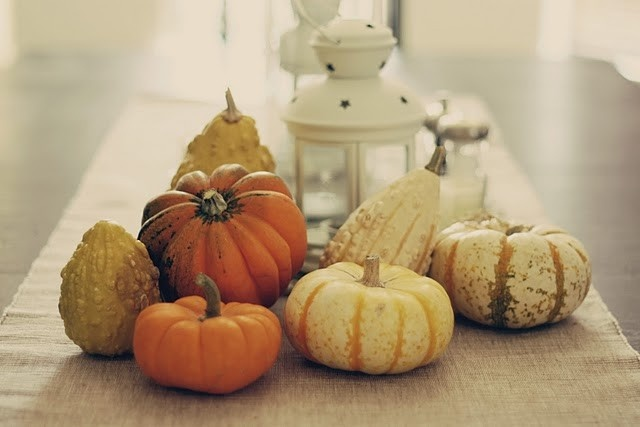 Mixed gourd centerpiece fall and halloween pinterest