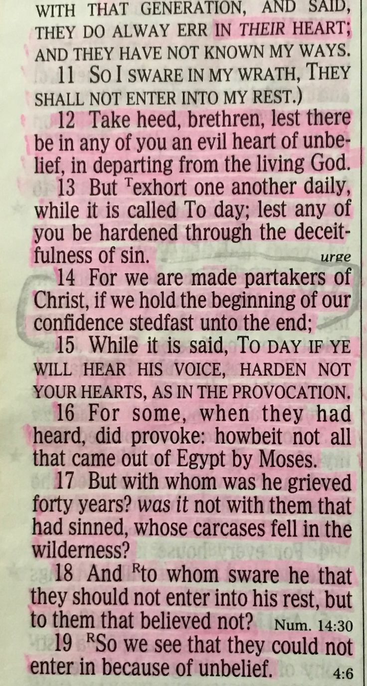 Hebrews 3:11-19