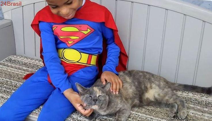 Garotinho se veste de super-herói para ajudar gatos abandonados