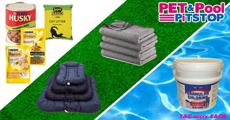 Spoil your pets with great #savings at Pet & Pool Pitshop Boksburg - to view all specials click here: http://apost.link/38k. Specials are valid from 19 May 2015 to 31 May 2015. While Stocks Last *E&OE T&C apply #PetPool #Specials