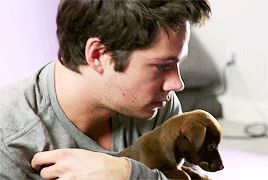 It was so cute! He could't concentrate on the questions that he got, because he was playing with the puppies!!!❤️