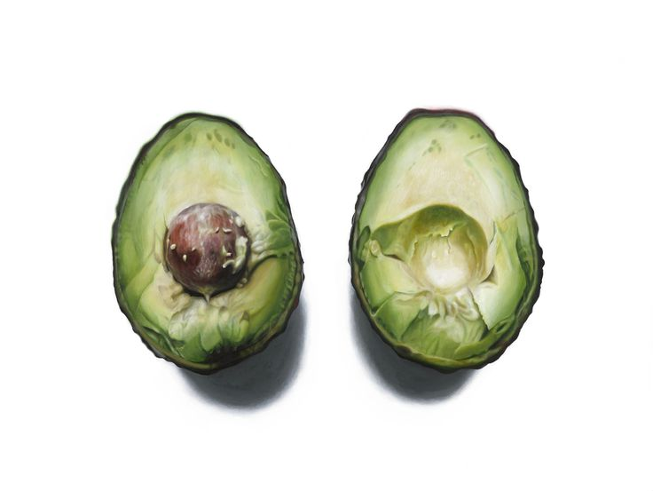 """ART by Erin Rothstein — """"Avocado II"""" - Limited Edition Print, Signed"""
