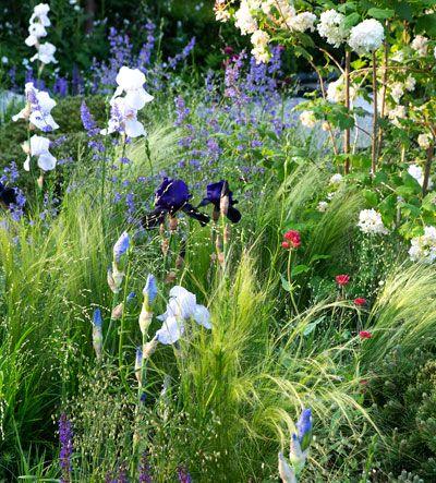 Wilde transparante borders. De basis bestaat uit bodembedekkers en grassen met daar bovenuit bloemen op hoge stelen.