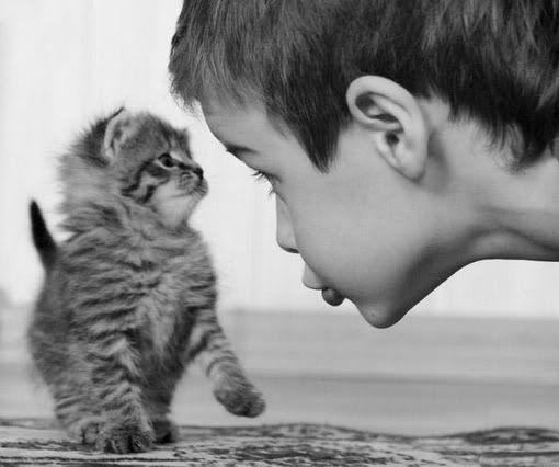Best friends, kitten and child.