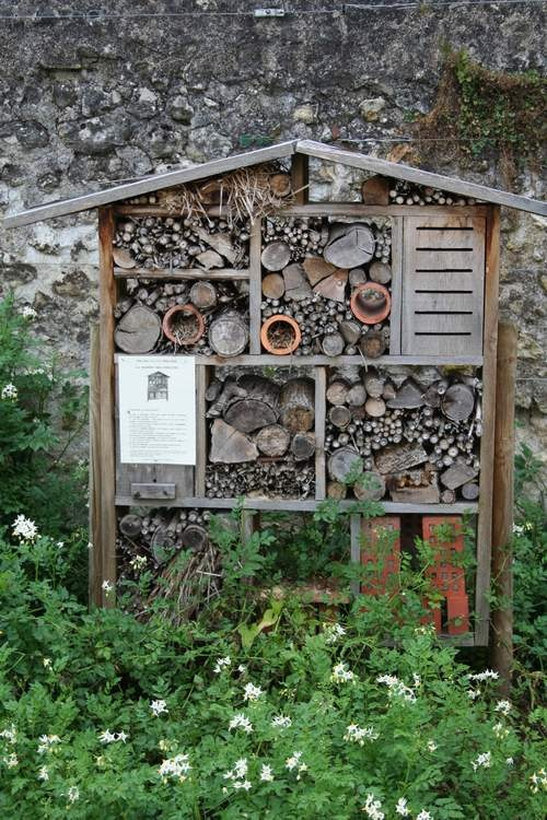 Insect hotel! Attracts native pollinators. I am so going to make one of these