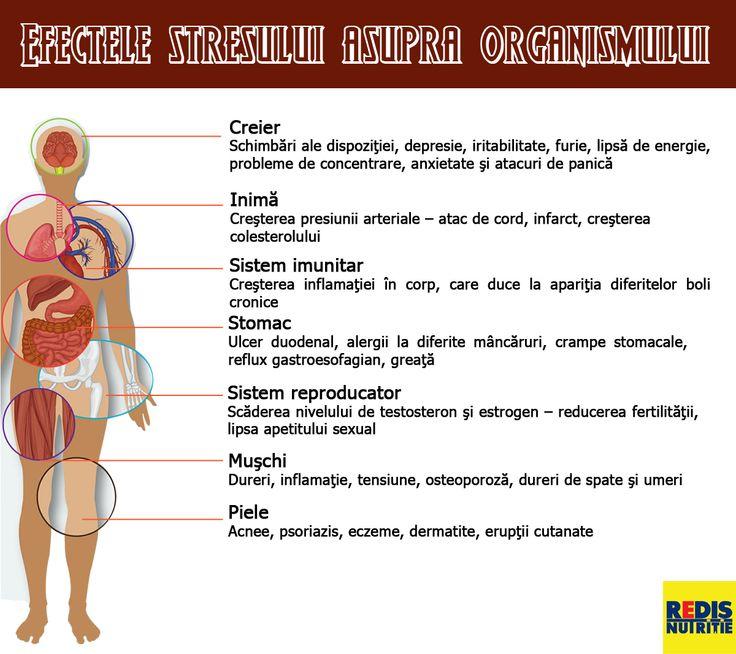 efectele stresului asupra organismului