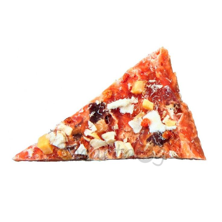 Premio Chicken Pizza til hunde. → Billige hundegodbidder