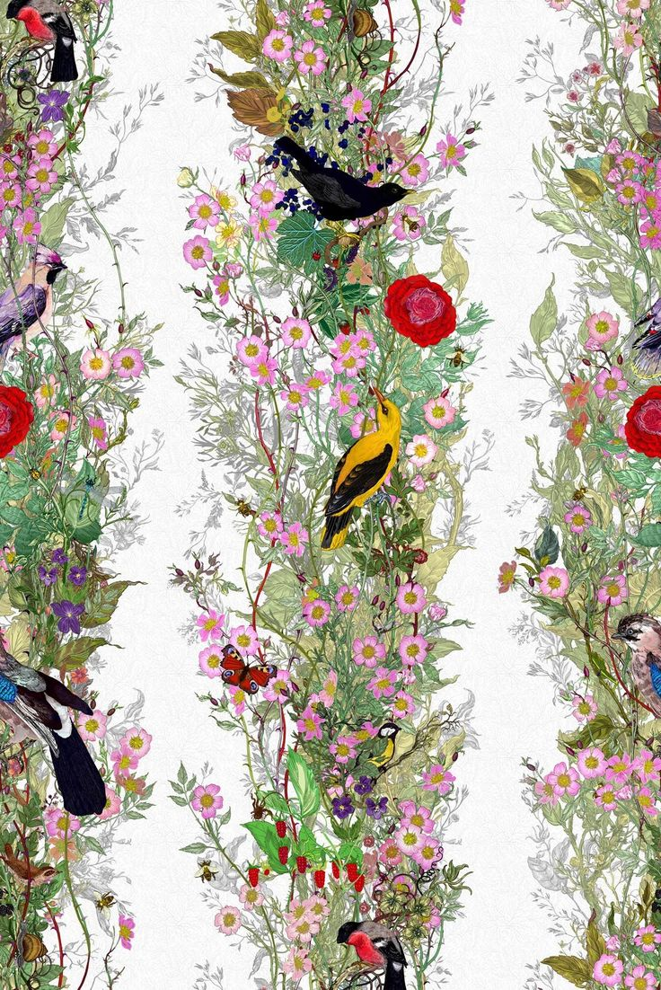 Fruit Looters - Timorous Beasties - Bird, Butterfly and Flora Wallpaper Wallcovering
