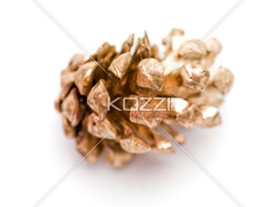 Golden Pinecone - A single gold pinecone on a white background.