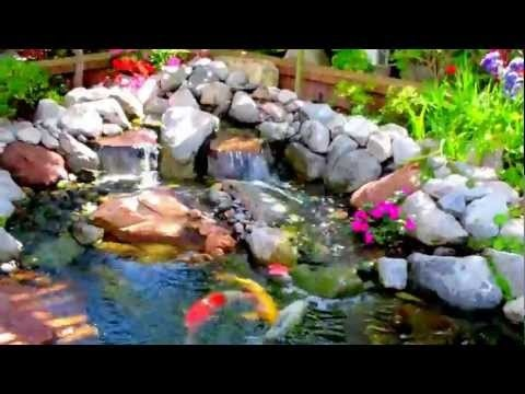 Los Angeles Most Beautiful Koi Pond In Los Angeles Designed And Installed  By Mike Garcia,