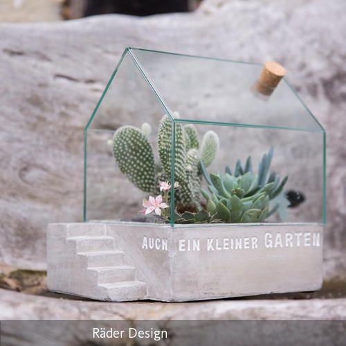 die 25 besten ideen zu kakteen auf pinterest kaktus. Black Bedroom Furniture Sets. Home Design Ideas