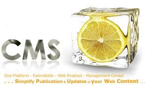 Begin your new #business with Dynamic WordPress #CMSWebDevelopment services http://www.forpressrelease.com/forpressrelease-133106-begin-your-new-business-with-dynamic-wordpress-cms-web-development-services.html