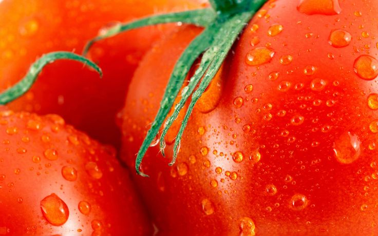 2880x1800 wallpapers free tomato