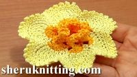 Easy to follow crochet video tutorial will help you to crochet a beautiful Narcissus / Daffodil flower.