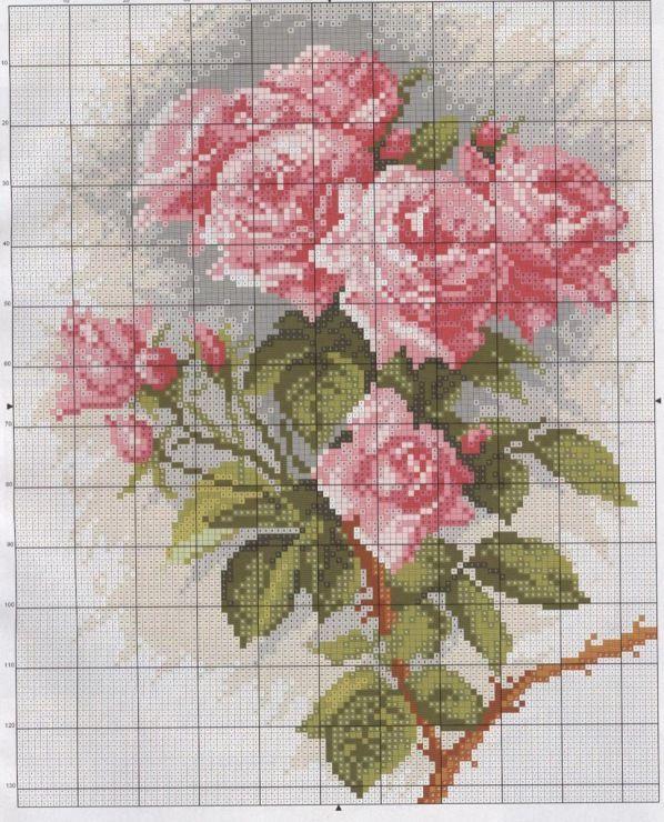 Gallery.ru / Φωτογραφίες # 16 - τριαντάφυλλα είναι διαφορετικά - irisha-ira