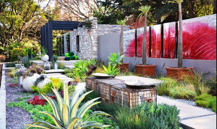 Water wise garden. Create colour with contrasting succulents