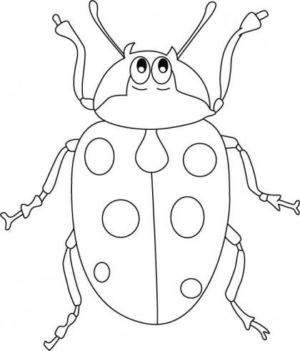 87 best Insects Coloring Pages images on Pinterest | Coloring ...
