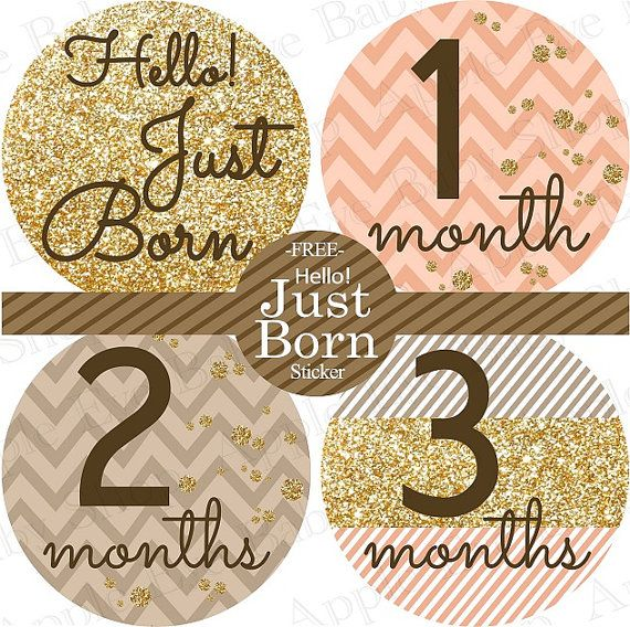 13 Monthly Onesie Stickers FREE Hello Just by appleeyebabyshop, $9.00