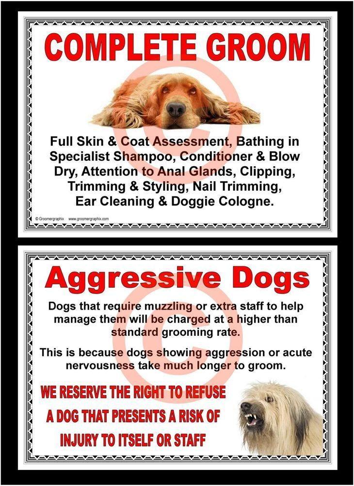 815 best dog grooming health safety images on pinterest dog dog grooming complete groom aggressive dogs signs by groomergraphix solutioingenieria Choice Image