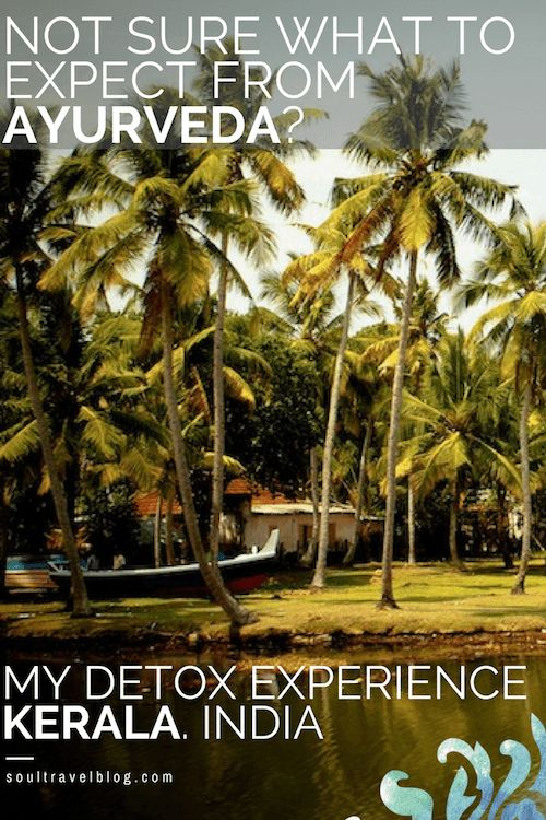 Curious about spiritual India? Want to know what to expect at an Ayurveda retreat in Kerala? Read my review of my Panchakarma Ayurvedic detox in Kerala, India here! Plus get tips on where to find the best Ayurveda retreats in India. Save this pin to one of your boards for later!