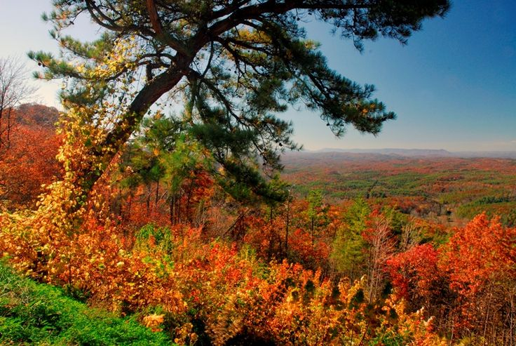 Tennessee is simply magical in the fall with its mountains and rolling hills beckoning travelers from around the world to experience a memorable fall getaway Made in Tennessee.