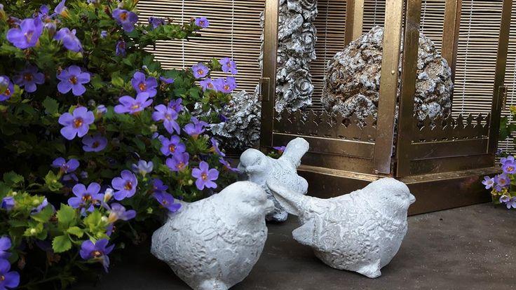 Dekoracyjne ptaszki ogrodowe   http://olx.pl/oferta/dekoracyjne-ptaszki-ogrodowe-CID628-IDh9Tql.html