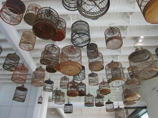 Images of White Rabbit Gallery, Sydney - Attraction Pictures - TripAdvisor