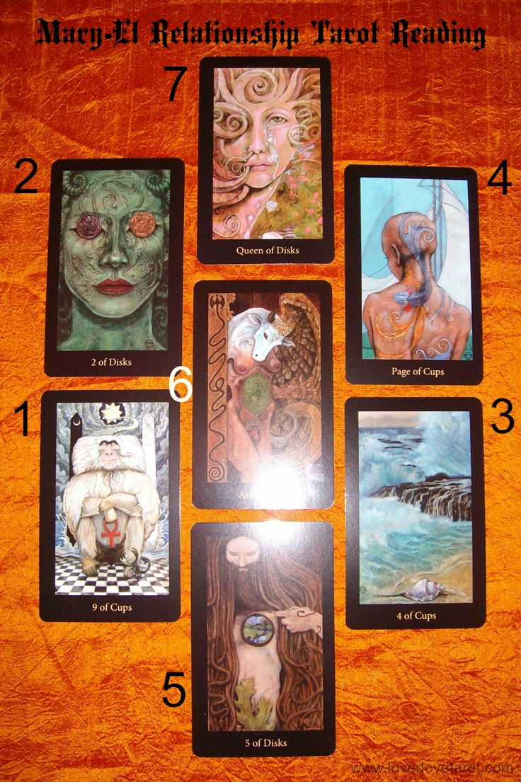Yes Or No Tarot Love Dove