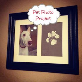 """From California to Kansas: Pupsicle DIY Project @Chelsi Rincones Rincones Sherman I think Le Anne would love these lol.. Since I do have a """"sister"""" dog"""