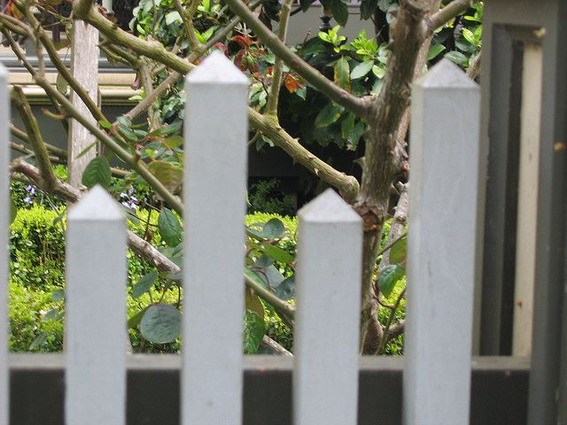 Perfect Picket Fence by Handforged, via Flickr