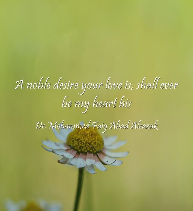 A noble desire your love is, shall ever be my heart his
