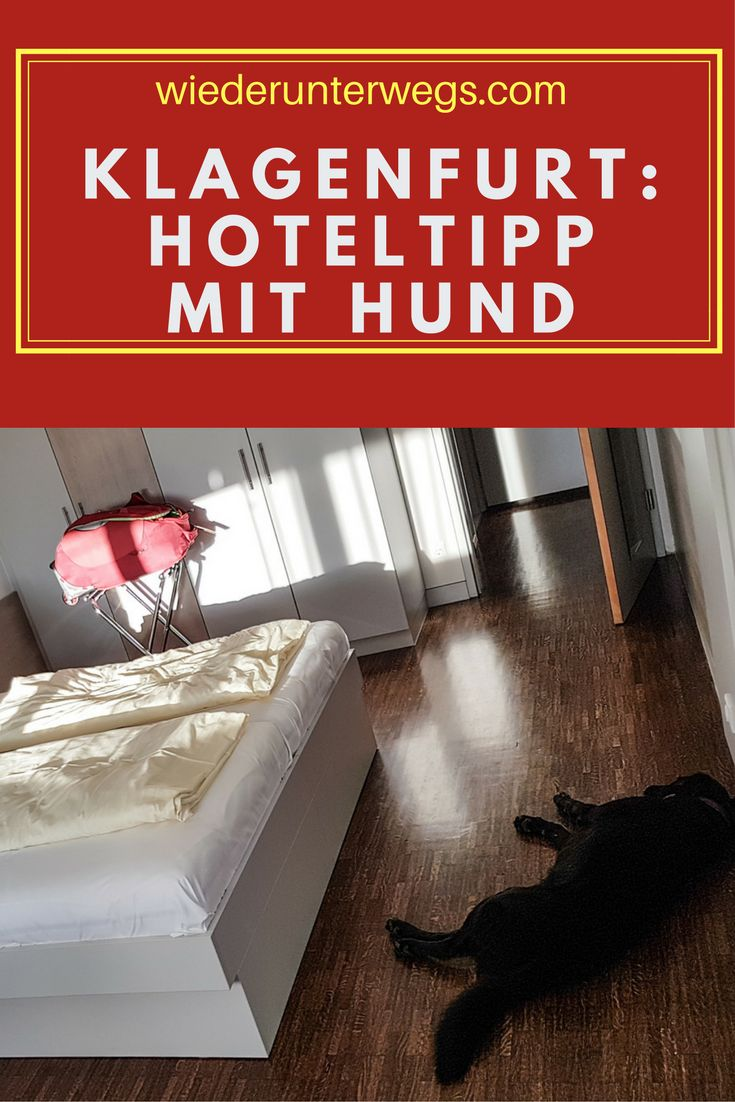 All You Need Hotel: Hoteltipp für Klagenfurt mit Hund.