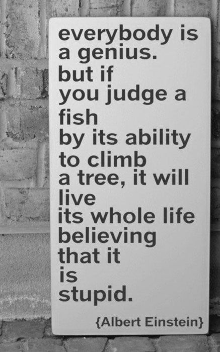 """""""Everybody is a genius. But if you judge a fish by its ability to climb a tree, it will live its whole life believing that it is stupid.""""- Albert Einstein"""