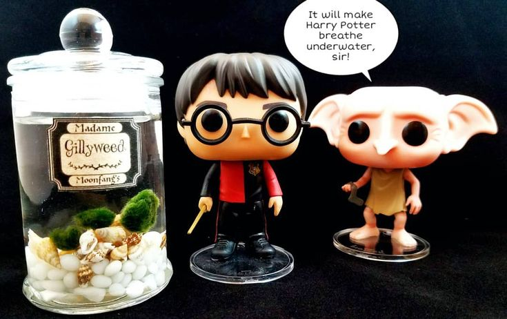 Don't rely on a devoted house elf to sneak you some Gillyweed in the nick of time! Get yours today from Madame Moonfang's and be prepared! Link in bio . . . . . #harrypotter #gillyweed #marimo #aquarium #plant #magic #magical #hogwarts #spell #triwizard #gobletoffire #funko #wizardingworld #funkopop #griffindor #slytherin #ravenclaw #hufflepuff #book #gobletoffire #school #platform934 #friend