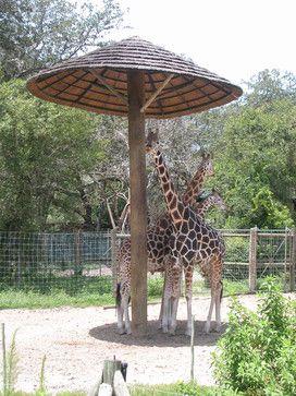 Thatch Umbrella - Natural tropical outdoor umbrellas