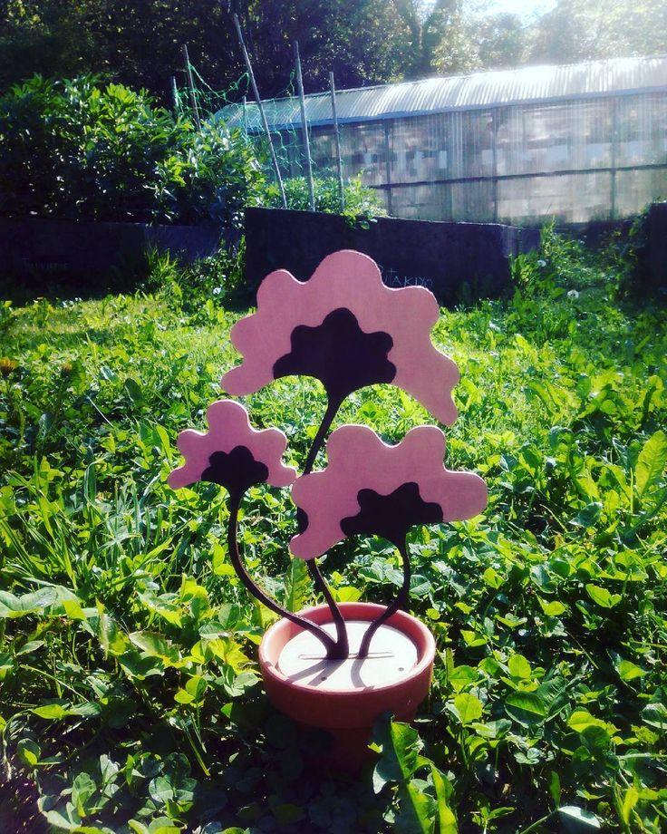 En los viveros de La Fábrica la Nymphaea Asiatica disfruta del calor  . . Nymphaea Asiatica enjoying the sun... . . #lafabrica #notonlytoys #nosolojuguetes #plantasdemadera #woodenplants #handmadedeco #woodendeco #decoraciondemadera #nymphaeaasiatica #greenhouse #invernadero #decoracionalternativa #homedecor
