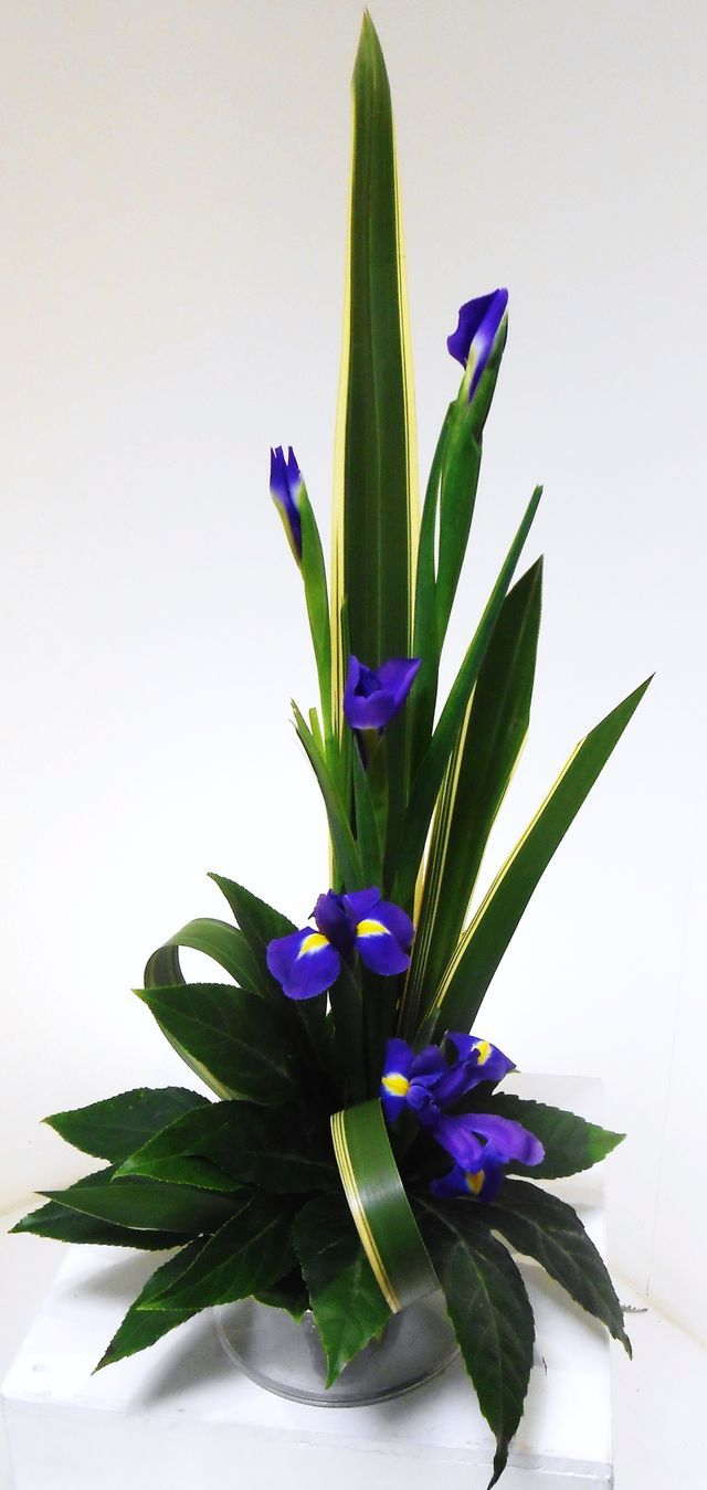 104 best creative flowers arrangements images on pinterest floral line design example izmirmasajfo Choice Image